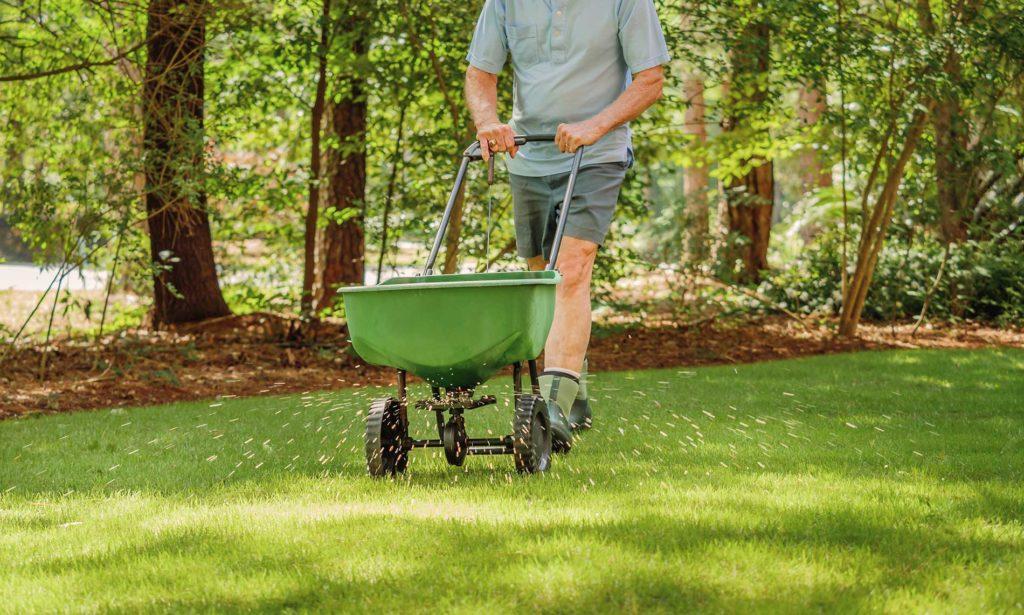 Sod-is-the-fastest-way-to-establish-a-lawn