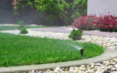 What You'll Love about an Irrigation System