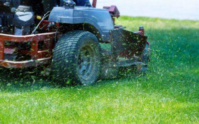 Landscape Maintenance Services in Penticton